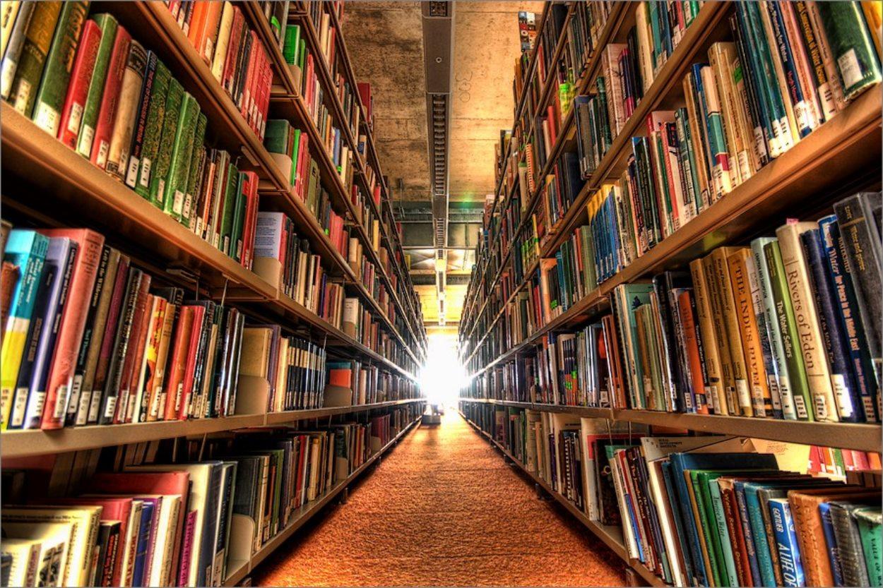 Bibliothèque - Photo : Rich Grundy