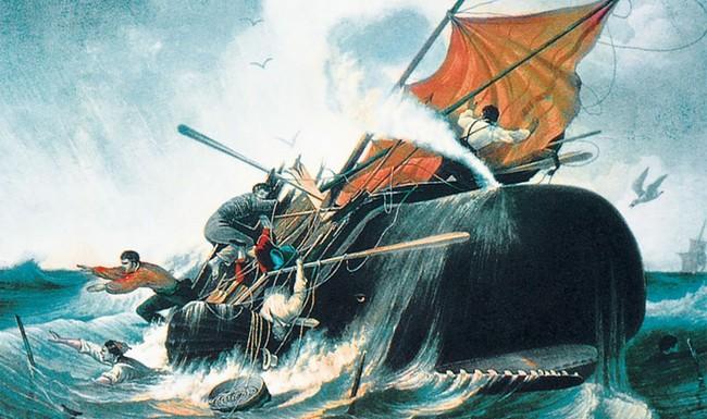 Au coeur de l'océan : la véritable histoire de Moby Dick