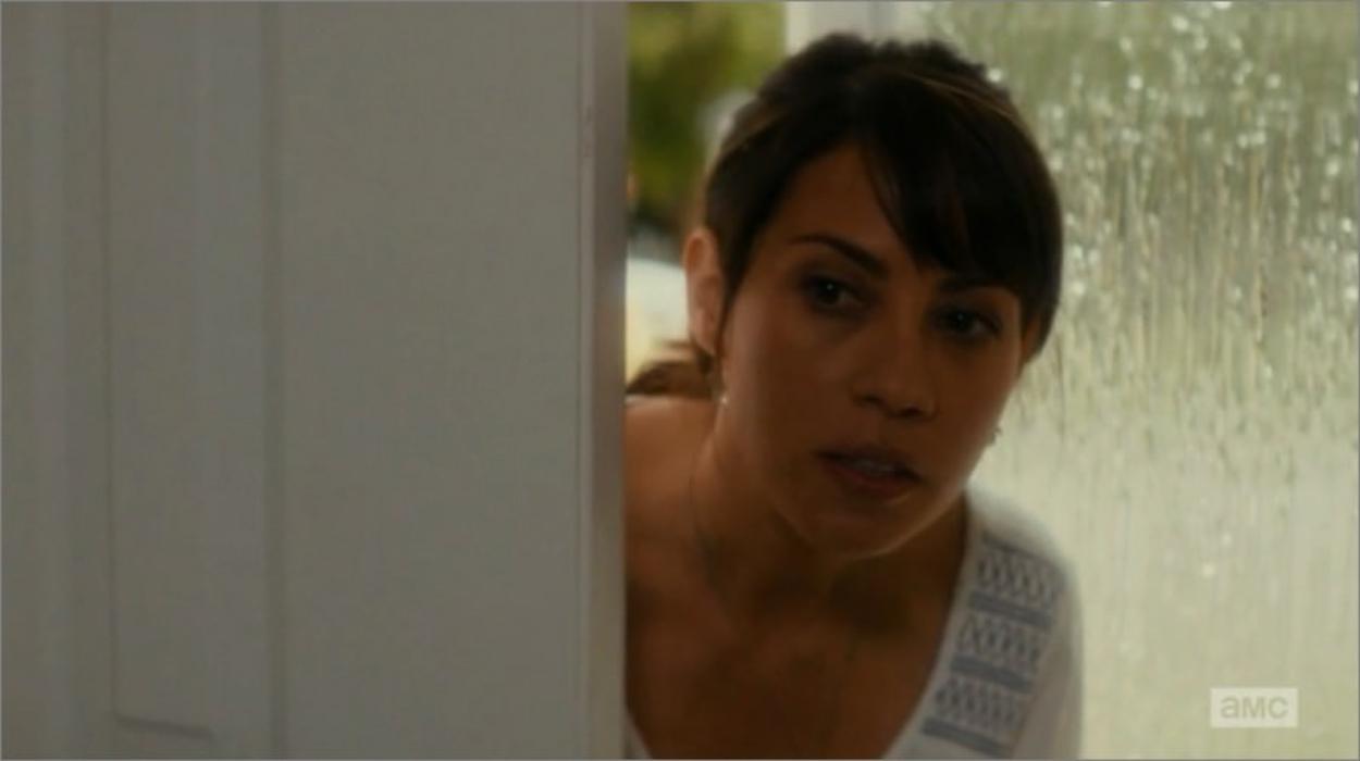 Elizabeth Rodriguez (Liza Ortiz)