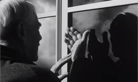 Les Fraises Sauvages, Ingmar Bergman : et vous, qu'avez-vous fait de votre vie ?