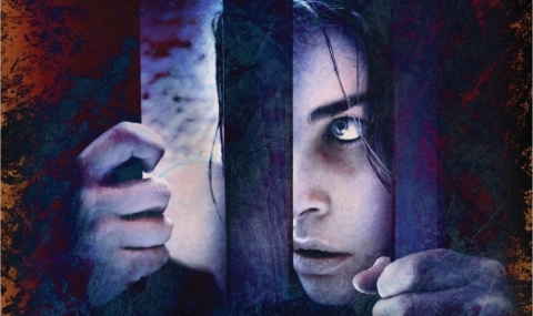 Alex, Pierre Lemaitre : une histoire d'enlèvement… ou peut-être plus ?