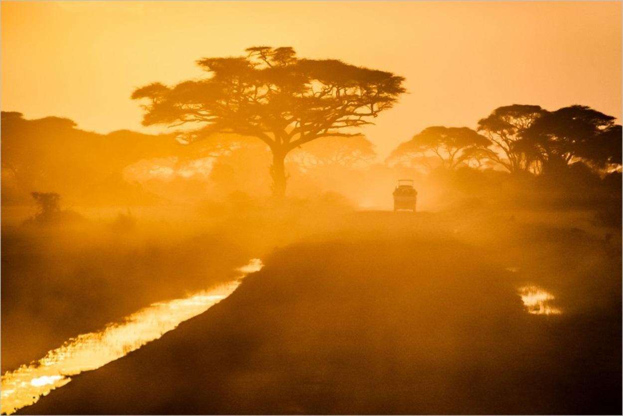 Petit pays de Gaël Faye : un très beau roman au coeur du Burundi