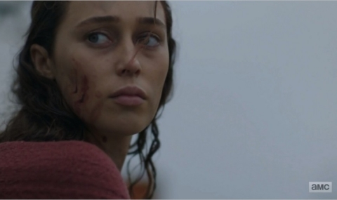 Fear The Walking Dead saison 3 épisode 13 : This Land Is Your Land