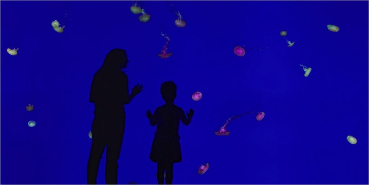 DeFred et sa fille Hannah à une époque heureuse - La Servante Ecarlate saison 1 épisode 1