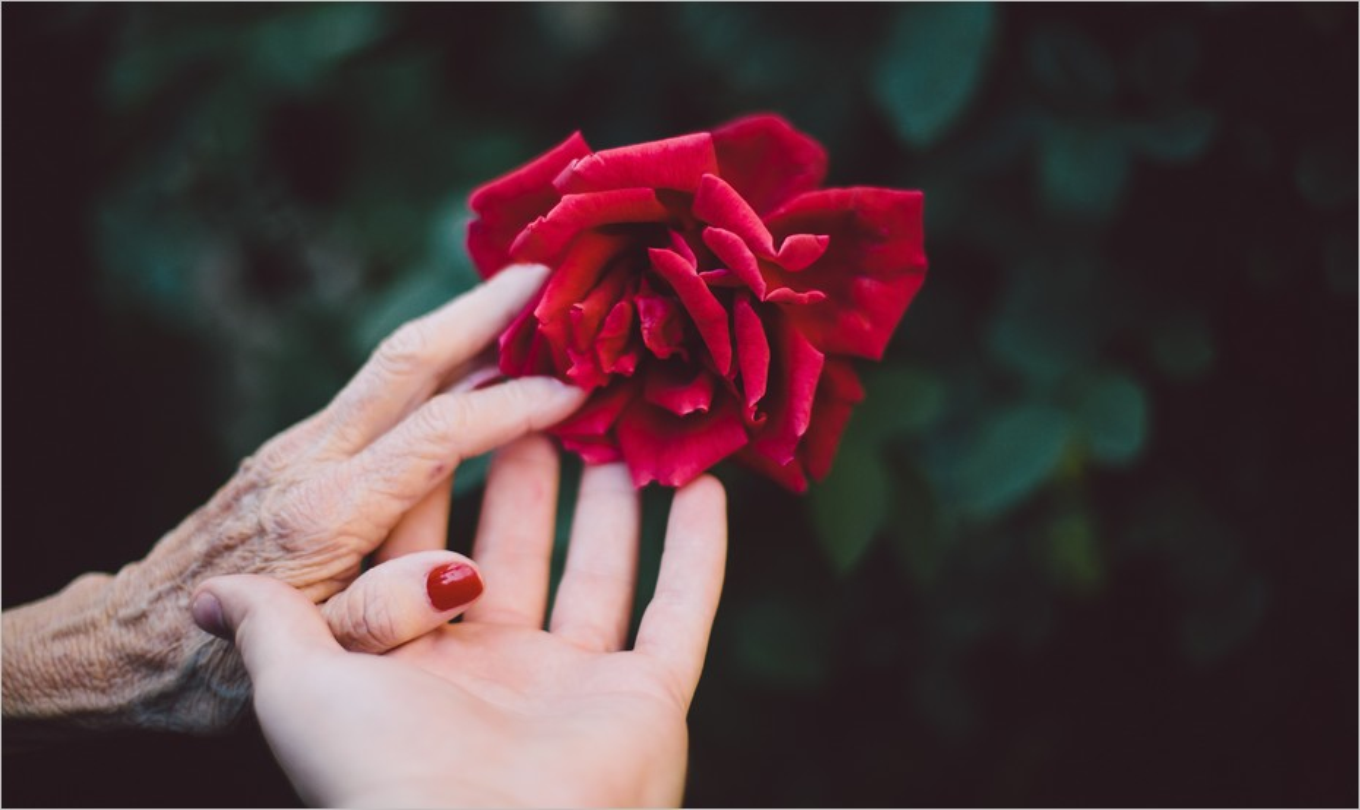 La femme qui ne vieillissait pas : la touchante exploration de Grégoire Delacourt