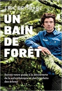 Un bain de forêt, Eric Brisbare