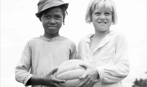 Cotton County, Eleanor Henderson : les noirs secrets d'une plantation