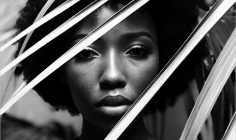 La couleur pourpre, Alice Walker : un roman intense et dérangeant