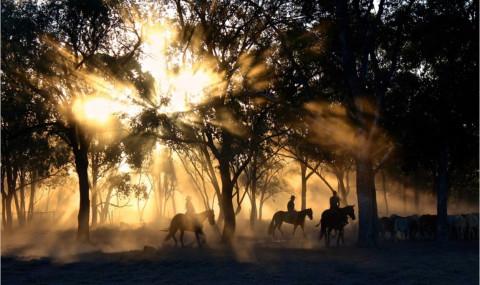 La dernière valse de Mathilda, Tamara McKinley : dans l'Outback australien