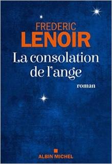 La consolation de l'ange, Frédéric Lenoir