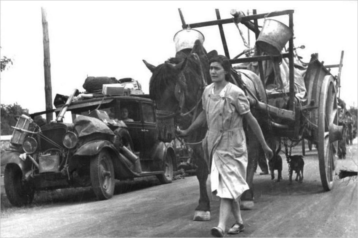 Suite française, Irène Némirovsky : photographie du peuple dans la guerre