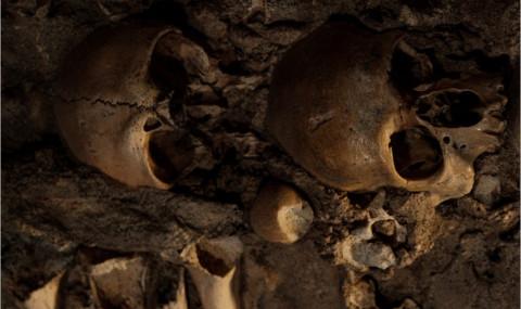 Poursuite, Joyce Carol Oates : le souvenir des squelettes